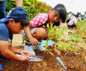 平和と緑を後世へ残そうと、花壇に苗を植樹する子どもたち=15日、糸満市摩文仁・県平和祈念公園