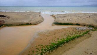 河口から海に流れ出る赤土=2018年、東村(おきなわグリーンネットワーク提供)