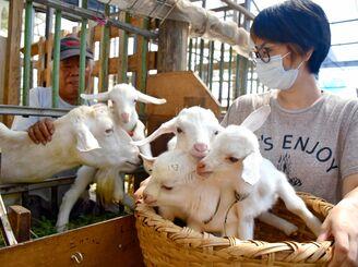 「ゆり子」と4匹の子ヤギを世話する赤嶺秀幸さん(左)と三女の知咲さん=6日、豊見城市金良