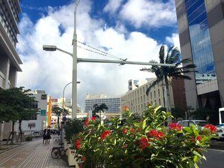青空が広がり、風も涼しく過ごしやすい1日でした