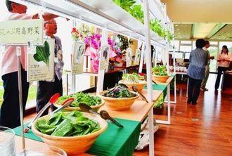 新鮮な島野菜が並ぶ「美ら島キッチン」=4月27日、名護市名護