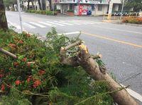 台風7号:女性が指切断 突風で扉に挟まれ… 沖縄・うるま市