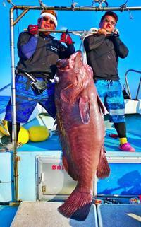 [有釣天]上がった瞬間、サメ吐き出す 慶良間沖で71キロ特大カンナギ