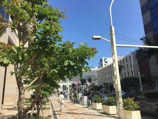 暑い日が続く沖縄