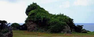 伊江島の北海岸に面する観光名所「湧出」付近にある岩=伊江村
