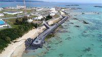 辺野古海域のハマサンゴに「食害」と沖縄防衛局 県「判断は困難」