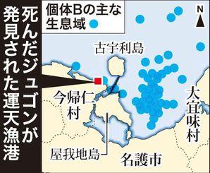 死んだジュゴンが発見された運天漁港