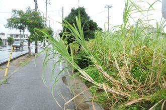台風13号の影響が出ている宮古島の様子=6日午後0時半ごろ
