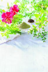 通販生活が販売している県内で栽培から製造までをしている白髪染め剤の「琉球ヘナカラー美ら艶」