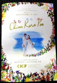 新郎新婦や参列者に、割引券付き観光ガイド 沖縄リゾートウェディング協会が発行