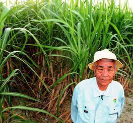 【再送】띱サトウキビとしまくとぅばについて語る宮城冨男さん。収穫が楽しみという=月日