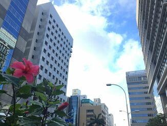 沖縄もだんだんと涼しくなってきました。天候に恵まれ、過ごしやすい1日でした。