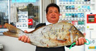 安謝海岸で68センチ、4.08キロのタマンを釣った宮里成和さん=1日