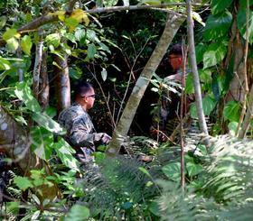 訓練場内の茂みの中で、落下したタイヤを探す米軍関係者ら=9日午後1時すぎ、金武町