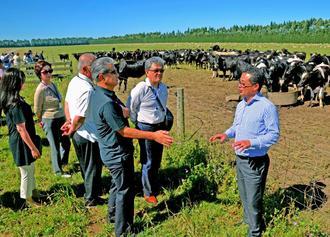 ヒツジや肉用牛を育てたり、乳牛を預かったりしている農場を案内するアンズコフーズの金城誠社長(右)=12日、ニュージーランドのクライストチャーチ
