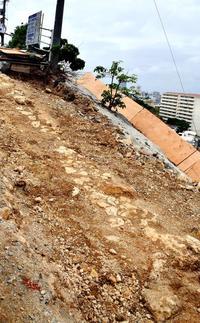 道路の下から500年前の石畳 「真珠道」の一部発見 那覇市・識名坂