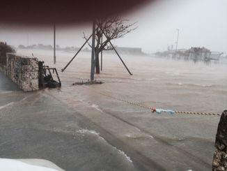 西原マリンパーク内で高潮が確認された=2014年10月11日