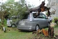 台風22号:南城で最大瞬間風速44.2メートル 沖縄県内3300戸が停電
