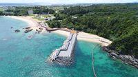 辺野古新基地:消える海浜6カ所でウミガメ産卵 防衛局「代替場所を検討」
