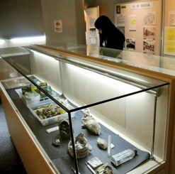 白梅学徒隊の証言などを集めた展示会=10日、八重瀬町立具志頭歴史民俗資料館