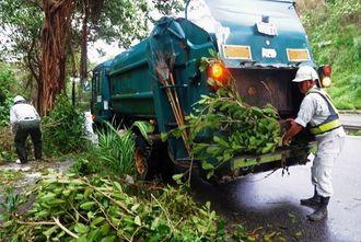 復旧 歩道に散乱した街路樹を清掃する作業員=午後4時30分、八重瀬町宜次