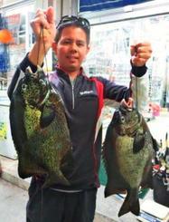 本部港で48.4センチ、2.44キロのガラサーミーバイを釣った仲村光史さん=11月8日