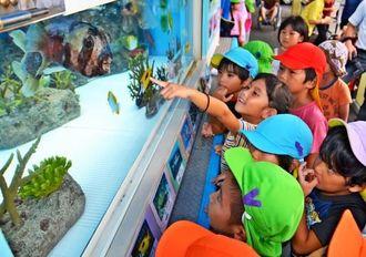 口を開けて泳ぐ魚に歓声を上げる子どもたち=25日、沖縄市古謝のデイサービスセンターはる