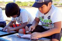 児童ら35人 魚料理体験/南城の奥武漁港