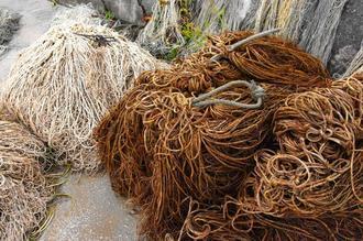 赤土に染まった網(右)と通常の網=21日、宜野座村・漢那漁港