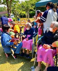 セラピー犬と触れ合う参加者=宜野湾市・ぎのわんおもと園