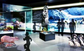 ペンギンが暮らす氷の世界のイメージ(DMM.com提供)