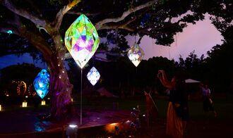 幻想的な光のアート作品の写真を撮る来場者=2日、読谷村高志保の「体験王国むら咲むら」