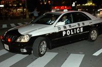 政府の米軍犯罪対策 非常勤職員でパトロール隊、県警は100人増員
