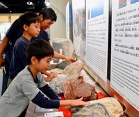 こんなにツルツル! 沖縄に新スポット「石の博物館」オープン