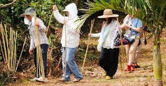 集落に津波が来ないよう願い、地面にダンチクを刺して境界をつくる女性たち=9日、宮古島市城辺砂川