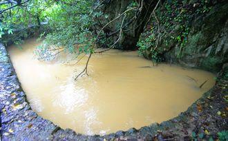 (写図説明)通常は澄んでいる流れが赤土で茶色に染まった天然記念物「塩川」=11日、本部町崎本部