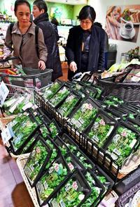 七草の節句、ことしは「琉球菜々草」でいかが? 那覇のデパートが初販売