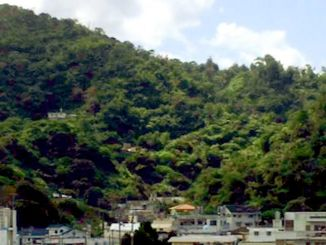 避難した防空壕は、名護の東江区の「じんが森」中腹部にあった