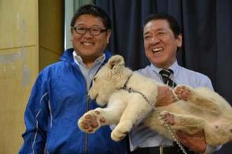 沖縄こどもの国の新たな仲間に加わったホワイトライオンを抱っこする桑江朝千夫沖縄市長(右)と東北サファリパークの熊久保信重代表=24日