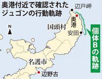 辺野古への石材海上搬送、ジュゴンへの影響危惧 奥港使用で沖縄県「変更承認が必要」