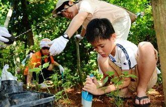 チョウが好む食草を植える参加者=那覇市・漫湖公園