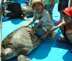 定置網にかかったアオウミガメを船上で、うれしそうに触る子どもたち。体長などを記録した後で海に戻された=16日、読谷村