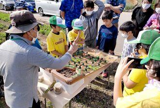 ジオラマで農地から赤土が流れ出る仕組みを学ぶ子どもたち=2020年12月26日、糸満市喜屋武のニンジン畑