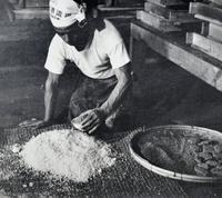 「泡盛ができる!」喜びに涙あふれる 沖縄戦で黒麹焼失、泡盛消滅のピンチ救った1枚のむしろ