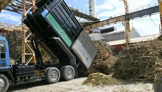 大型トラックで工場に搬入されるサトウキビ=25日、うるま市・ゆがふ製糖