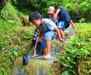 川遊びを楽しむ子どもたち=2日、うるま市宮城島のハルガー
