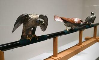 金沢市の東京国立近代美術館工芸館(国立工芸館)で一般公開される、鈴木長吉の銅置物「十二の鷹」=24日午後