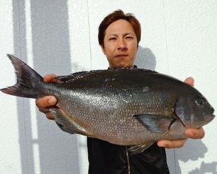 9日、宜名真漁港で41・5センチ、1・32キロの尾長グレを釣ったチームうみあっちゃーの渡久地一樹さん