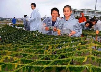 アーサを収穫し、笑顔の子どもたち=北中城村美崎