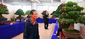 愛好家が丹精込めて育てた盆栽に見入る来場者=14日、浦添市のメイクマン浦添本店